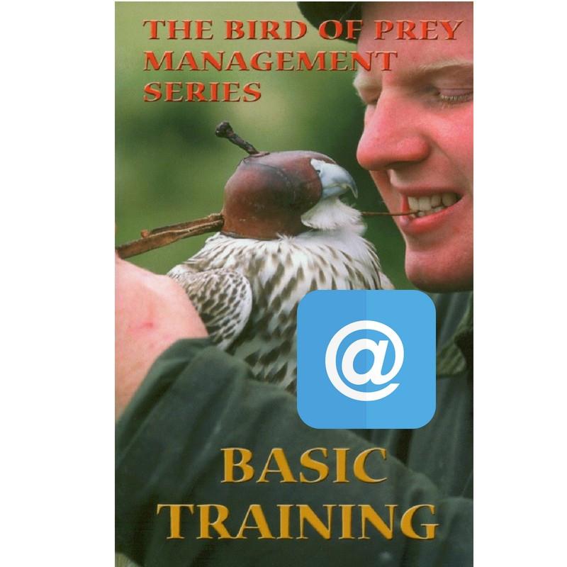 Film (z polskimi napisami) autorstwa Nicka Foxa p.t. BASIC TRAINING - WERSJA ELEKTRONICZNA