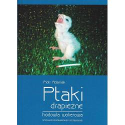 Ptaki drapieżne hodowla wolierowa - Piotr Adamiak