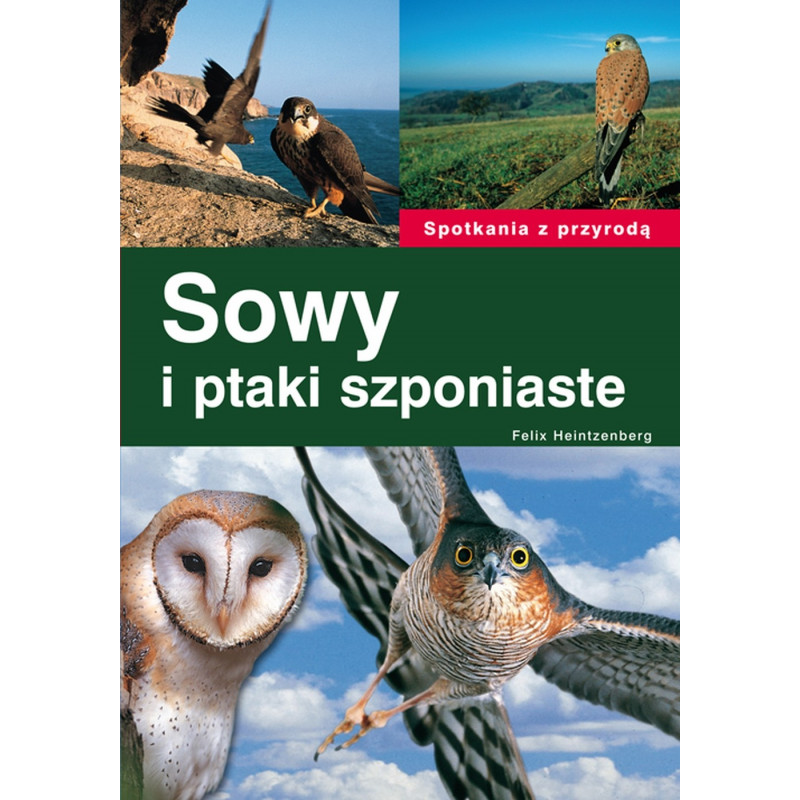 Sowy i ptaki szponiaste - Felix Heintzenberg